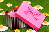 Gift box on grass — Stok fotoğraf