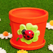 Small flowerpot — Stock Photo