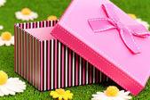 Dárková krabička na trávě — Stock fotografie