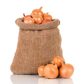 Onions in bag — Stock Photo