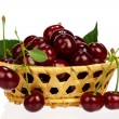 Sweet cherries — Stock Photo #24601123