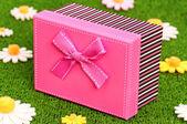 Boîte de cadeau sur l'herbe — Photo