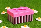 çimenlerin üzerinde hediye kutusu — Stok fotoğraf