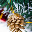 Christmas decoration  — Stock Photo #17820831