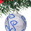 Christmas decoration — Stock Photo #17826439