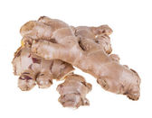 Ginger — Stock Photo
