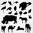 set of silhouettes of animals on zoo — Stock Vector