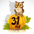 Wise owl sit on a pumpkin - Halloween Party October 31 — Stock Vector