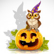 Wise magician owl sit on a pumpkin - Halloween symbol Jack - Stock Vector