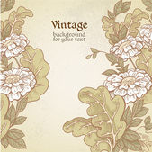 Vintage color background with wild meadow flowers — Stock Vector
