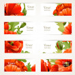 Stock Vector: Set of banners with fragments of red poppies