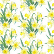 Seamless pattern lush yellow daffodils on white background — Stock Vector