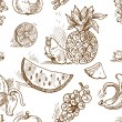 Seamless pattern of tropical fruit doodles — Stock Vector