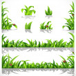 Green lush grass with dew and ladybirds - a set of elements for design — Stock Vector