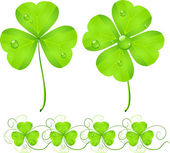 St. Patrick's Day green clover — Stock Vector