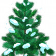 Vector de stock : Fir-tree with snow