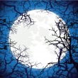 Frame from silhouettes of bare branches of trees on full moon ba — Stock Vector