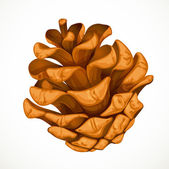 Pine cone isolated on white background — Vector de stock