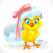 Cute baby chick just hatched from an Easter egg — Stock Vector