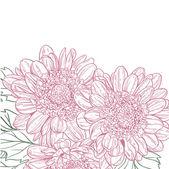 Fond de chrysanthème — Vecteur