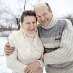 Senior couple. — Stock Photo #18215709
