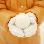 Snow ball. — Stock Photo #37003995