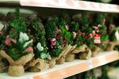 Sale of bare Christmas tree — Stock Photo