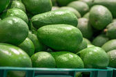 Full box of green Avocado in supermarket — Stock Photo