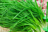 Bunch of spring onions — Stock Photo