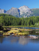 Strbske Pleso in Slovak High Tatras at summer — Stock Photo