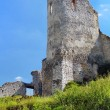Постер, плакат: Donjon of The Castle of Cachtice Slovakia