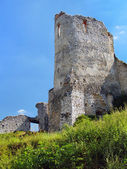 Donjon of The Castle of Cachtice, Slovakia — Stock Photo