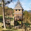 Wooden fortification tower in Havranok — Stock Photo #13373269