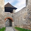 Entrance gate to the Trencin Castle — Stock Photo #14357803