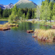 Nove Strbske Pleso in High Tatras — Stock Photo