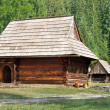 rare wooden folk houses in zuberec — Stock Photo