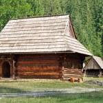 Постер, плакат: Rare wooden folk houses in Zuberec