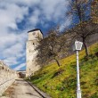 Clock tower of The Castle of Trencin — Stock Photo #20997605