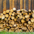Pile of chopped logs — Stock Photo