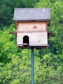 Wooden Birdhouse — Stock Photo