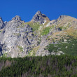 Peaks of High Tatras at summer — Stok fotoğraf