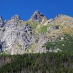 Peaks of High Tatras at summer — Stock Photo #28161155