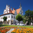 Stock Photo: Flowers and townhall in Levoca, Slovakia