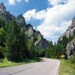 Road to Vratna Valley, Slovakia — Stock Photo
