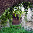 Mysterious catacombs of The Castle of Beckov — Stock Photo