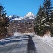 Stock Photo: Road to High Tatras in winter