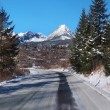Road to High Tatras in winter — Stock Photo #29946207