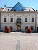 Town hall in Banska Bystrica, Slovakia — Stock Photo