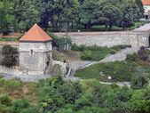 西吉斯蒙在斯洛伐克布拉迪斯拉城堡的大门 — 图库照片