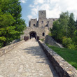 Road and gate of Strecno Castle — Stock Photo